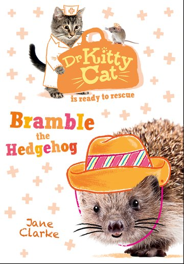 Dr KittyCat is ready to rescue: Bramble the Hedgehog