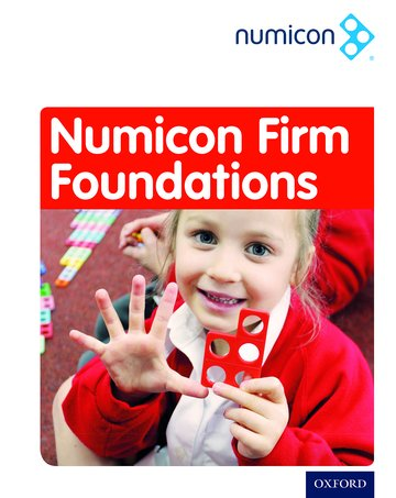Numicon: Firm Foundations Teaching Pack