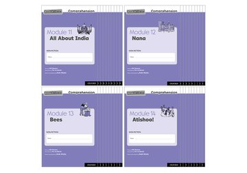Read Write Inc. Comprehension: Modules 11-14 Class Pack of 40 (10 of each title)