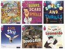 Oxford Reading Tree inFact: Level 10: Class Pack of 36