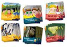 Oxford Reading Tree Explore with Biff, Chip and Kipper: Level 6: Class Pack of 36