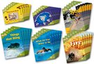 Oxford Reading Tree: Level 7: Fireflies: Class Pack (36 books, 6 of each title)