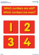 Which numbers are odd or even: 2-20 (PDF)