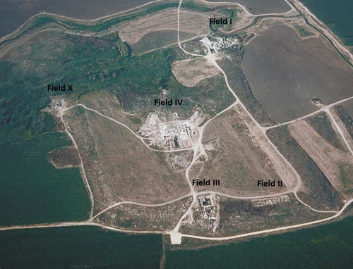 Fig. 1. Aerial view of Tel Miqne-Ekron, looking north, with excavation fields.  Courtesy Sy Gitin and David Ben-Shlomo.