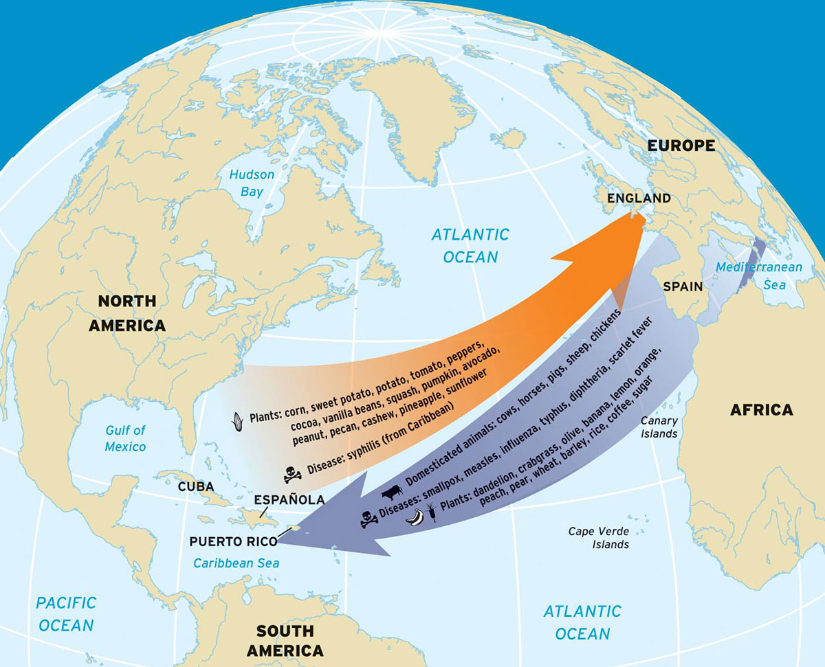 africa and the atlantic world Atlantic slave trade kingdom world africa and the atlantic world states of west and east africa characteristics songhai empire africa and the atlantic world.
